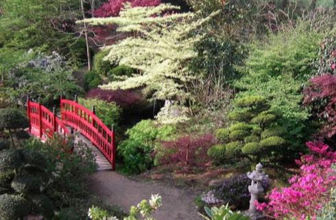 Fabrique citoyenne (les résultats du 28 janvier) : le projet «Un jardin japonais à Rennes» est classé en 8ème sur la ville, en 2ème sur le quartier !